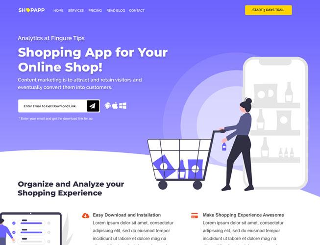 App Startup Landing Page